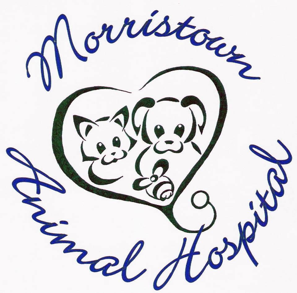 Morristown Animal Hospital logo